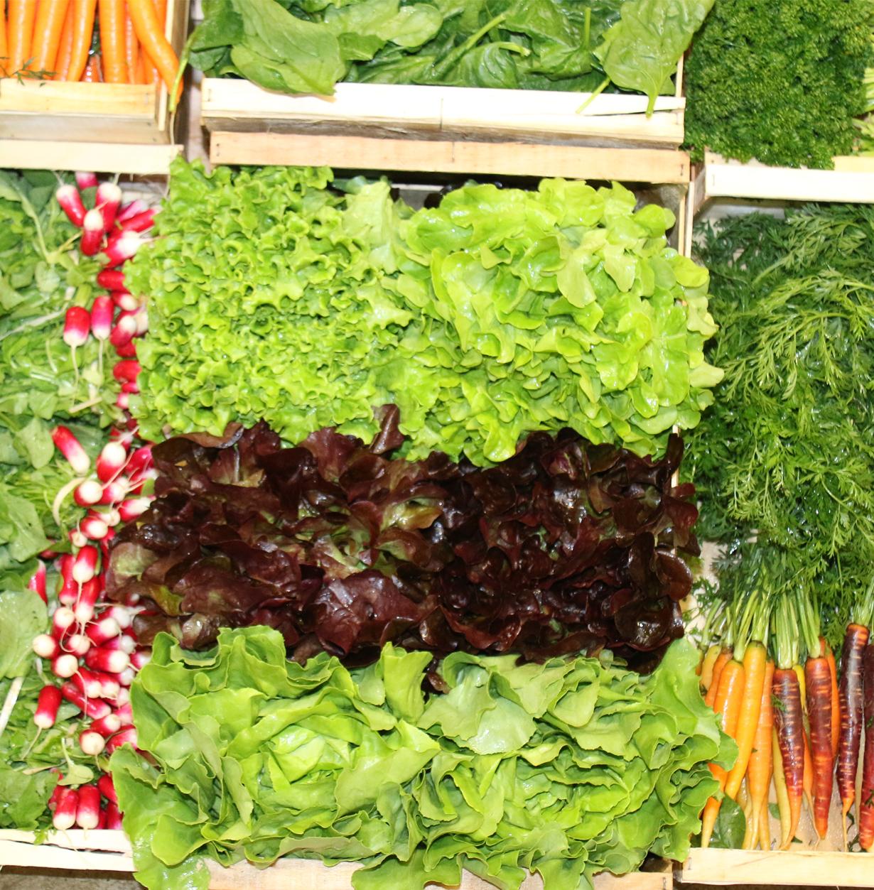 Colis de légumes fraîchement récoltés